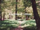 A körmendi Várkert története és élővilága